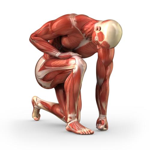 Como fortalecer musculos de las piernas